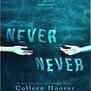 never never by collen hoover